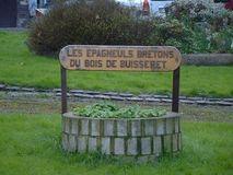 Les Epagneuls Bretons du Bois de Buisseret - Boarding